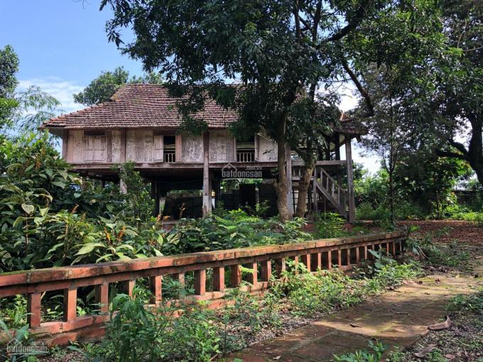 Cần bán 5900m2 khuôn viên nhà vườn có ao tại xã Nhuận Trạch, Lương Sơn, Hòa Bình