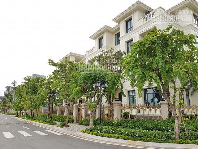 Nhiều biệt thự Vinhomes Ba Son cần bán 225m2-325m2 và 437.5m2 hỗ trợ vay 75% trong 25 năm. Giá tốt