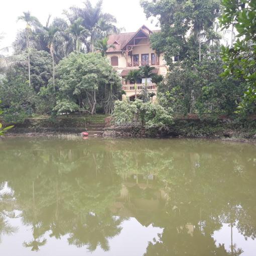 Cần bán biệt thự 4000m2 nhà vườn hoàn thiện có ao tại Hòa Sơn, Lương Sơn