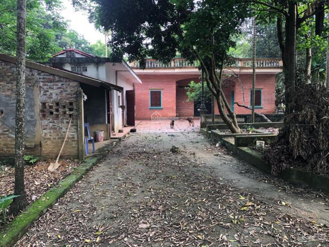 Cần nhượng nhà vườn có nhà sẵn ở 8000m2 đất thổ cư 400m2 tại Hòa Sơn Lương Sơn, Hòa Bình giá 4.9 tỷ