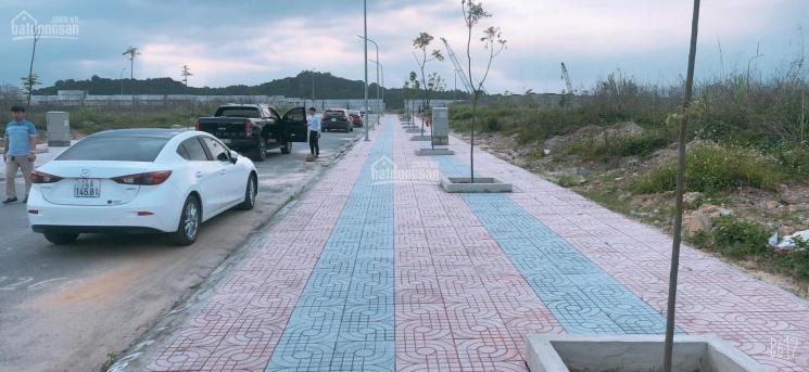 Cán bán 2 ô liền kề hướng biển khu đô thị Cao Xanh Hà Khánh B mở rộng. Giá rẻ nhất thị trường
