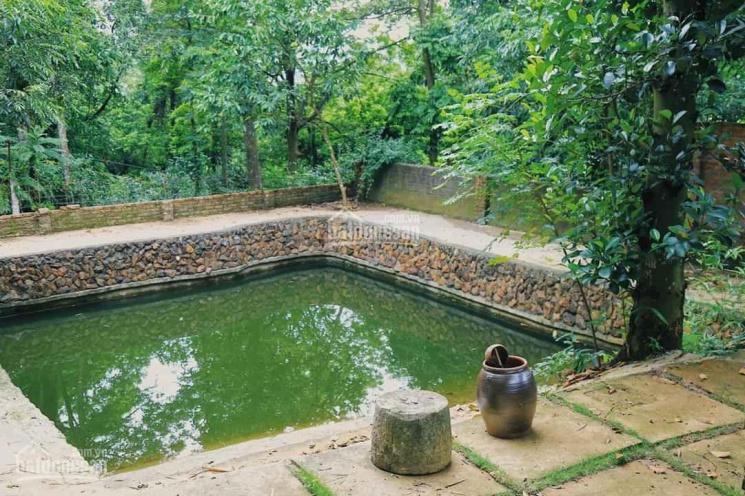 Cần bán lô đất làm nhà vườn tại thôn Nam Thành - Hòa Phong - Hòa Vang - Đà Nẵng. LH: 0859280551