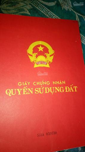 Cần bán đất phường Tiến Thành, Đồng Xoài, Bình Phước ảnh 0