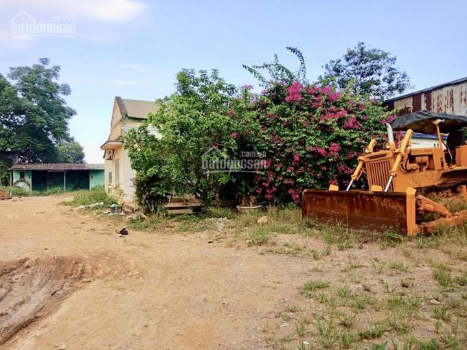 Cho thuê đất Quận Cẩm Lệ 1300m2 lâu dài