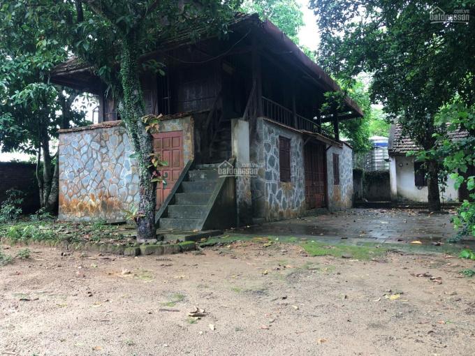 Bán khuôn viên nhà vườn 3400m2 vị trí đẹp, tiện đường, có nhà sàn, Cư Yên, Lương Sơn, Hoà Bình