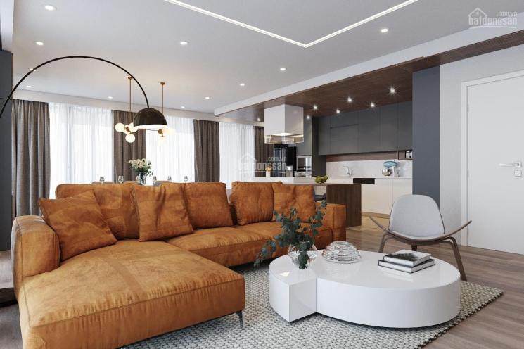 Tôi cần bán căn hộ chung cư cao cấp tại chung cư D2 - Giảng Võ, Ba Đình, Hà Nội ảnh 0