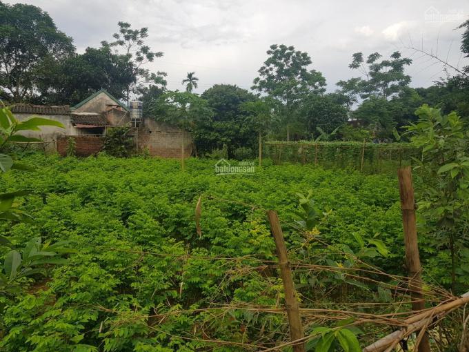 Bán 2500m2 lô góc 2 mặt tiền đất trang trại nhà vườn tại Nhuận Trạch, Lương Sơn, Hòa Bình