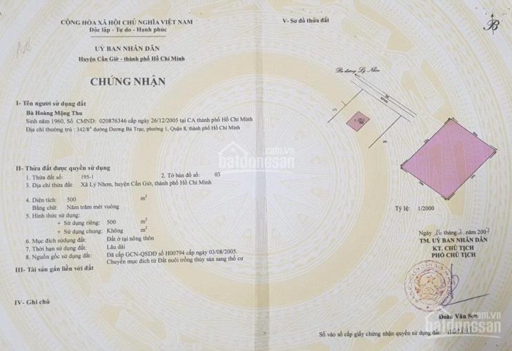 Bán đất 11.024m2 cách trung tâm xã Lý Nhơn 800m - quy hoạch khu dân cư lên thổ - giá 900ng/m2 ảnh 0