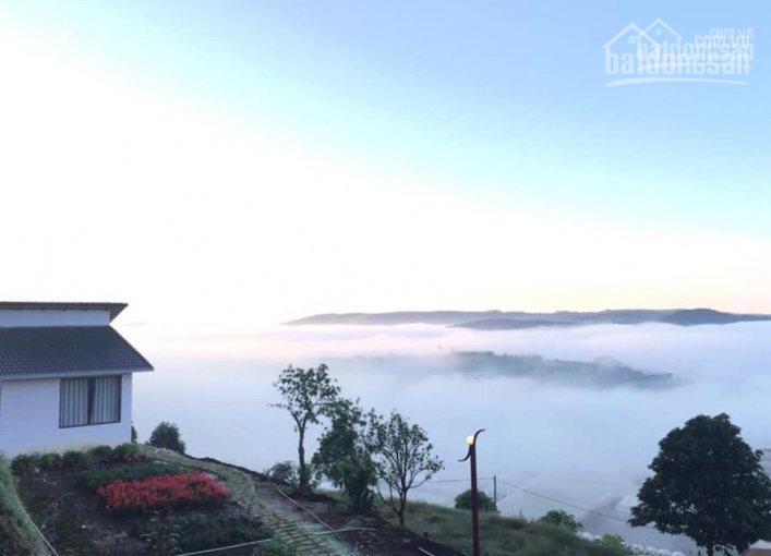 Sang nhượng farmstay 2000m2 view rất đẹp có thể làm cafe check - in săn mây. Liên hệ: 0903323567