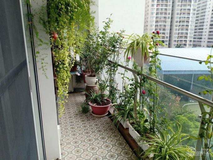 Cần bán gấp căn hộ Green Valley DT 120m2 Q7, Phú Mỹ Hưng, LH: 0908874622 ảnh 0