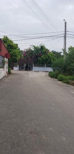 Bán 57m2 đất thôn Thành Công, xã Đặng Cương, An Dương, Hải Phòng