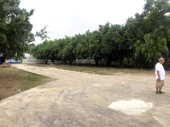 Cho thuê kho bãi bê tông cốt thép 2000m2 có nhà ở 120m2 nằm ngay mặt tiền Nguyễn Thị Bành
