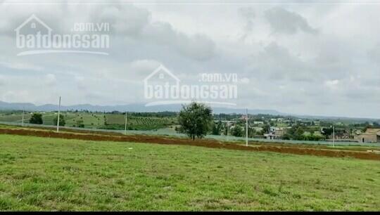 Đất nền nghỉ dưỡng TP Bảo Lộc, Lâm Đồng siêu rẻ