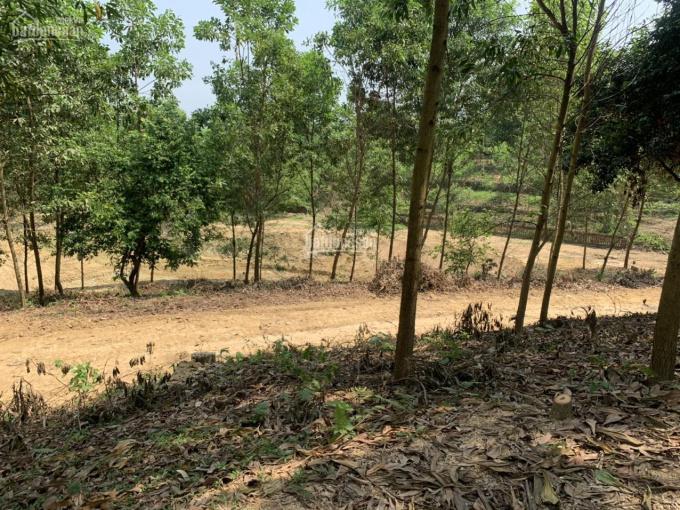 Chính chủ cần bán 2.877m2 tại Hồ Đồng Chanh, SĐCC đường rộng, thế đất đẹp, có suối giá chỉ 1.2tr/m2