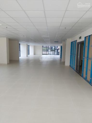 Cho thuê mặt sàn làm văn phòng diện tích từ 100m2 - 300m2 - 500m2 - 1000m2, LH 0906011368