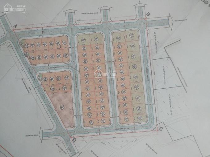 Bán đất đấu giá 200m2 đất xã Thạch Đài - TP Hà Tĩnh - Khởi điểm 800 triệu