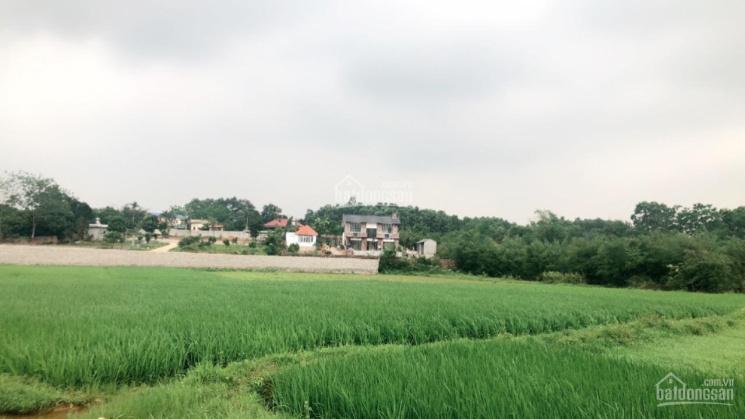 Bán Siêu phẩm 4.040m2 có 400m2 thổ cư còn lại là đất trồng cây lâu năm