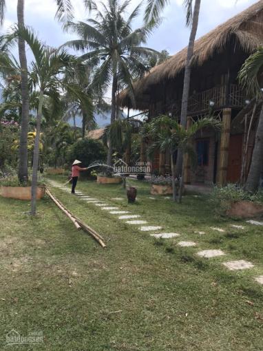 Bán resort diện tích 4729m2 liền kề khu du lịch Wild Beach Ninh Phước, TX. Ninh Hòa 0989777738