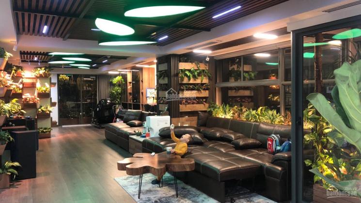 BQl cập nhật mới nhất 500 căn hộ - văn phòng cho thuê tháng 6/2020 đẹp nhất Vincom Trần Duy Hưng