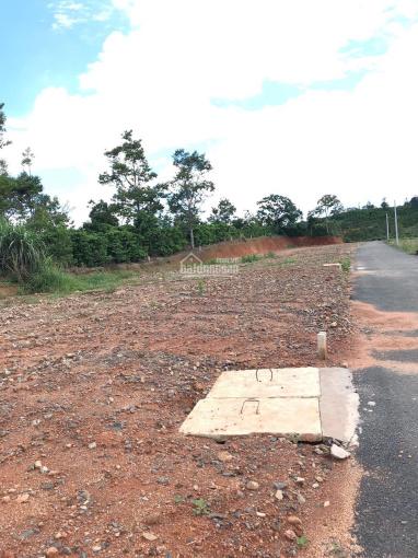 Sở hữu ngay lô đất mặt tiền liền kề đường tránh QL20
