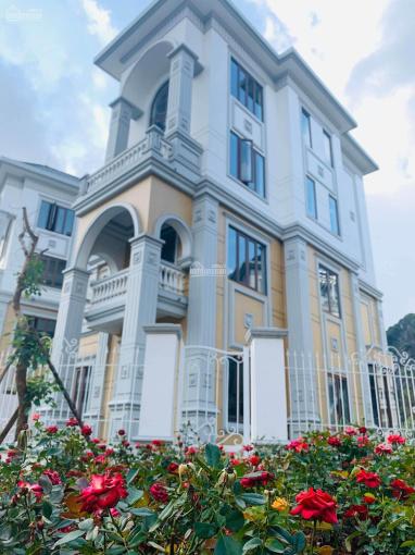 Bán nhà biệt thự mặt đường Trần Quốc Nghiễn - Mon Bay