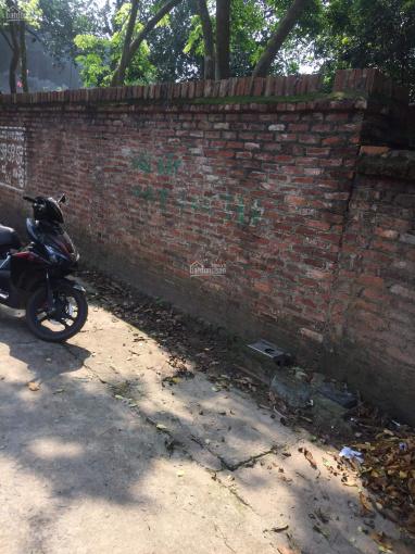 Cần bán lô đất tại TDP Đông Nghĩa phường Đồng Tâm - TP Vĩnh Yên. LH 0888995958