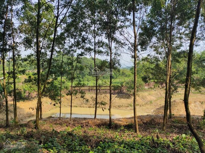 Nhượng lại 5600m2 đất trang trại nhà vườn giá rẻ gần hồ Đồng Chanh Lương Sơn, Hòa Bình