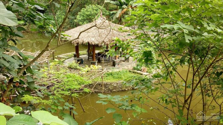 Khuôn viên hoàn thiện 2,3ha ở Lương Sơn giá hợp lý