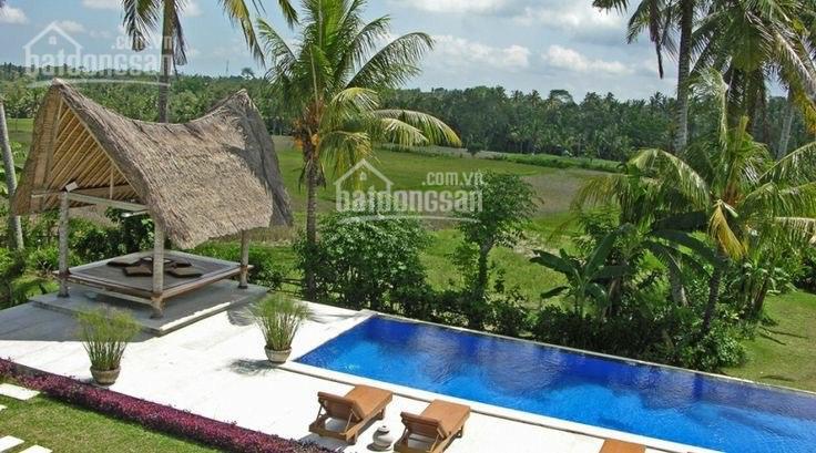 Cần bán đất nhà vườn Nghỉ dưỡng tại Nhơn Trạch: 0865992269 ảnh 0