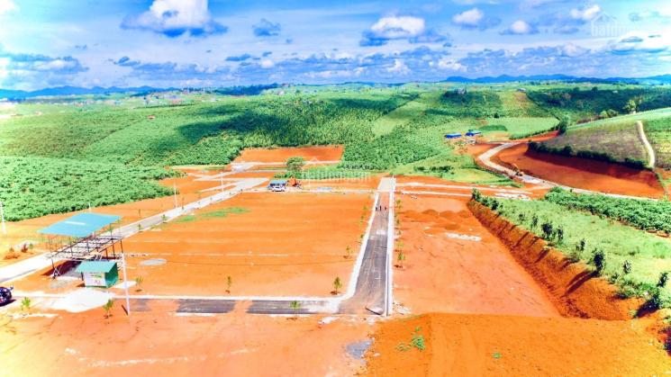 Bán đất xây dựng biệt thự vườn mặt tiền lý thường kiệt, sổ hồng riêng, dt 220m2 giá 5tr/m2