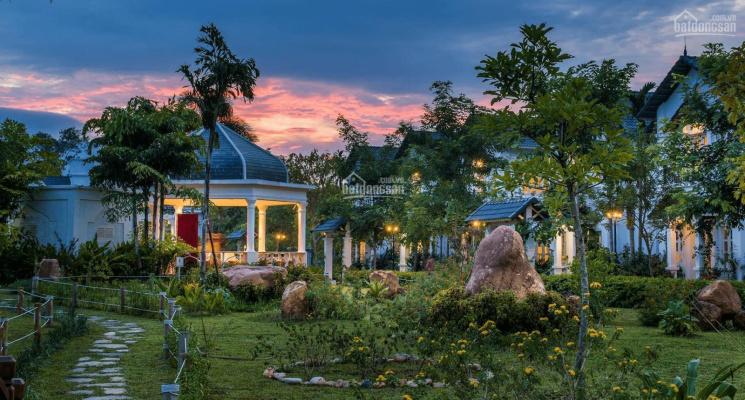 Chính chủ bán biệt thự view hồ cá Koi rộng nhất tại dự án Legacy Hill Hòa Bình