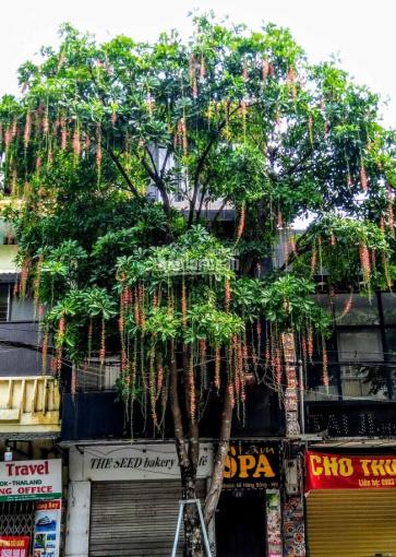 Cho thuê nhà mặt phố Hàng Bông - Hàng Gai, Hoàn Kiếm, Hà Nội
