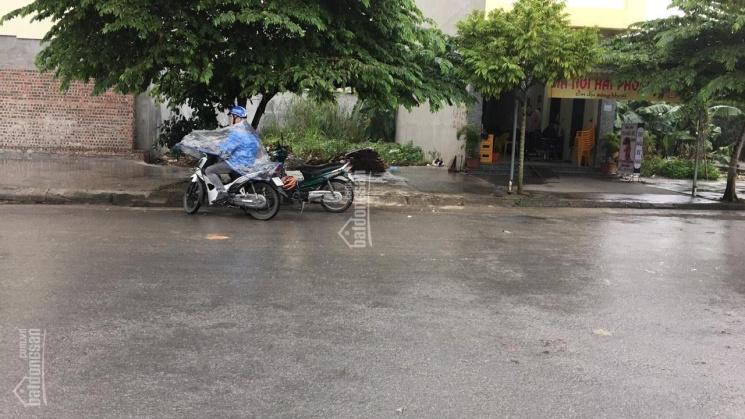 Chính chủ bán lô đất vị trí đẹp cổng làng Hoàng Mai, Hồng Thái, An Dương, Hải Phòng. LH: 0987364866