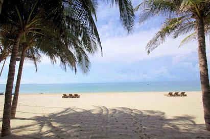 Bán resort 4200m2 Nguyễn Đình Chiểu khu phố 1