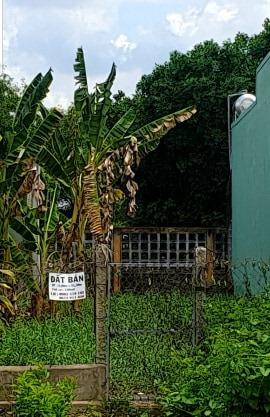 Bán đất mặt tiền đường Phùng Thanh Vân, thổ cư 130m2. Liên hệ 0963519107