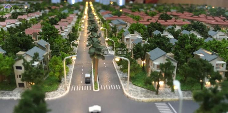 Đất Nam Vĩnh Yên GĐ1 - GĐ2 cần mua gấp lô biệt thự tại KĐT mới Nam Vĩnh Yên - LH: 0979945249