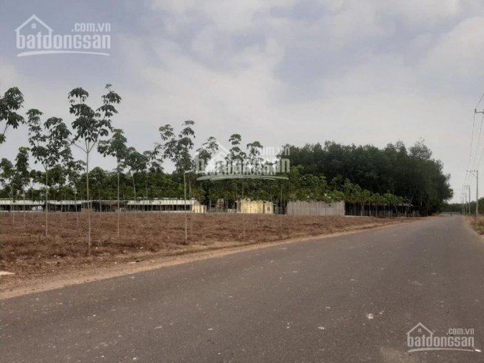 Bán đất giá tốt Minh Thành mặt tiền đường QL 14 kế bên KCN Becamex