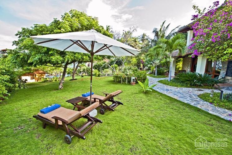 Bán resort 1.25ha Nguyễn Thông Phú Hài ảnh 0