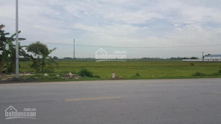 Chuyển nhượng đất dự án cụm công nghiệp tại tỉnh Hải Dương ảnh 0