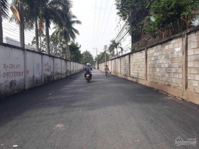 Chính chủ bán đất DT lớn có 300m2 đất thổ cư, thích hợp ở hoặc kinh doanh tại Thuận An, Bình Dương ảnh 0
