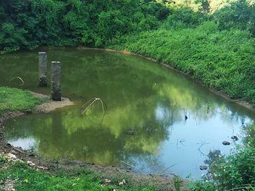 Khuôn viên 1,8ha ở Lương Sơn giá chỉ hơn 600.000đ/m2