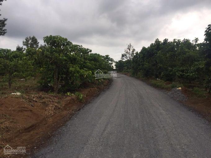 Cần bán đất vườn 1,82 sào, đường rải đá 5m, sổ đỏ riêng, P. Lộc sơn