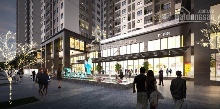 Chính chủ bán lô kiot trung tâm thương mại dự án Green Park Trần Thủ Độ, 0989580198 ảnh 0