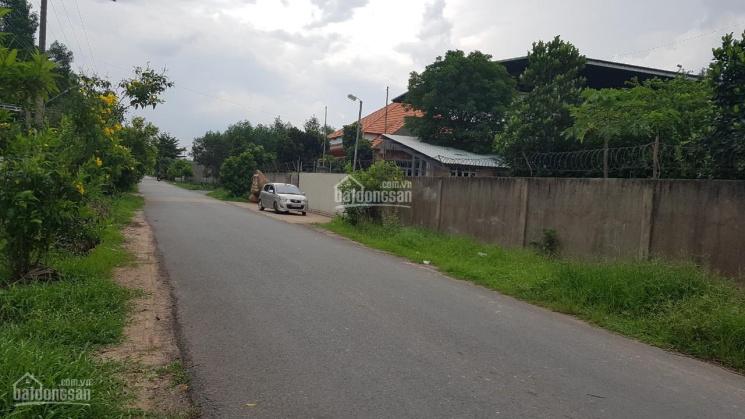 Cho thuê nhà xưởng đường Phùng Hưng, xã An Viễn, DT: 2000m2 ảnh 0