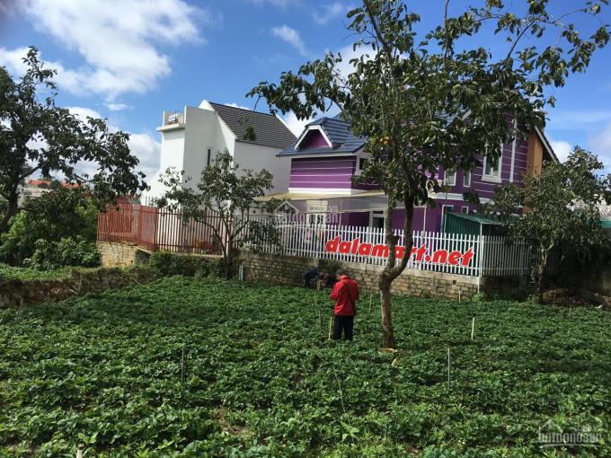 Chính chủ cần bán lô đất vị trí đẹp tại Đà Lạt
