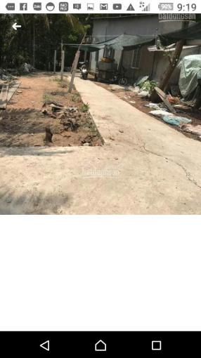 Bán nền đất vườn 268m2 Phú Nhuận TP Bến Tre mặt tiền hẻm 1m8 giáp KDC Phú Nhuận - LH 0907426968