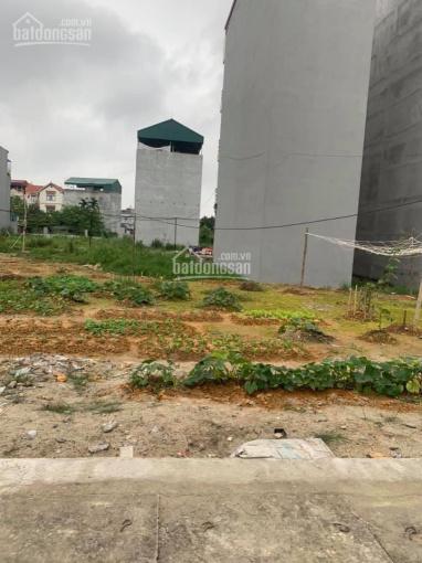 Chính chủ bán đất dịch vụ nằm trong quần thể KĐT Tân Tây Đô, Xã Tân Lập, Đan Phượng, Hà Nội
