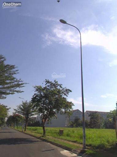 Thanh lý gấp 5 nền đất ngay KDC Đại Phước Center City, Nhơn Trạch, ĐN, giá thỏa thuận DT 100m2, SHR ảnh 0