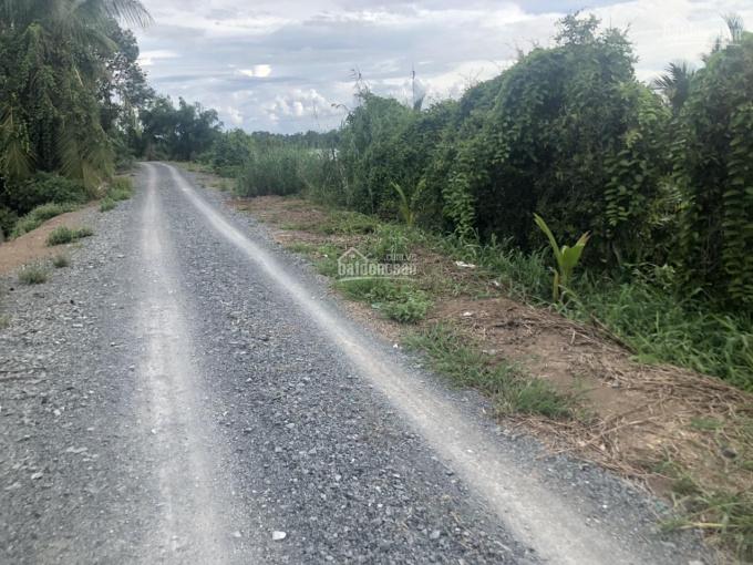 Bán đất sông Vàm Cỏ Đông thuộc xã Lương Bình, Bến Lức, Long An