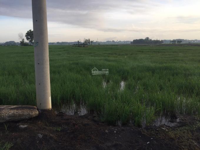 Bán đất xã Vĩnh Thanh, mặt tiền đường ô tô tới đất, cách Quận 2 10km (tờ 48 thửa 98, tờ 48 thửa 97)